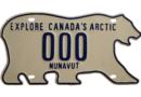 لوحة أرقام السيارات على شكل دب قطبي